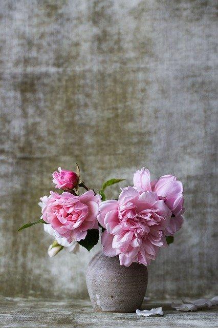 roses, bunch, bouquet