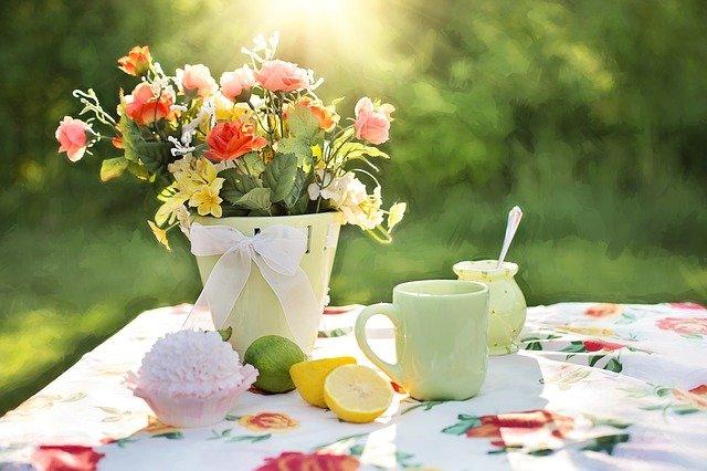 summer, still-life, garden